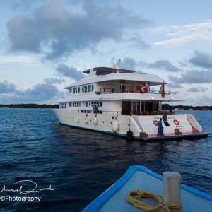 Expeditions malediven horizonII reisen adventure holiday maldives safari maldivas reisebloghellip