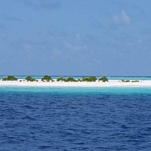 See feel hear adventure maldives maldivas malediven resien barca vacanzehellip